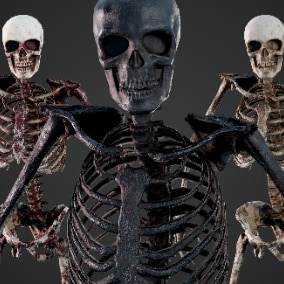 Low poly Skeleton with 6 Color Variations. Rigged with Epic Skeleton with openable jaw (no retarget needed). Separated bones are included (modular).