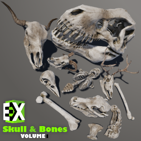 High-Quality Variation Of Skull & Bones With 3 Set Of Materials For Level Design.