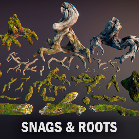 Huge roots, snags, and stumps pack for any your nature scene.