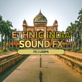 High-quality ethnic, india, culture, ambiance sound effect!  Enjoy!