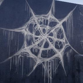 Huge Spiderweb Collection