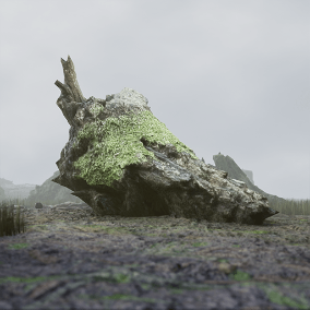 The RealiScan Stumps package contains 16 high-quality photoscanned tree stumps and remains. All objects have been scanned on-location in a forest.
