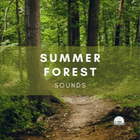 A collection of 103 nature tracks, each 1 minute in length and loop seamlessly.