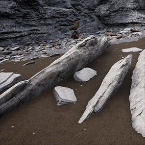 A maritime environment with high-quality photogrammetry-based surfaces and meshes. Includes a landscape material, several rock, sand and pebble surfaces, rock fields, boulders, rock plates and cliff modules, beach woods, sea shells and more.