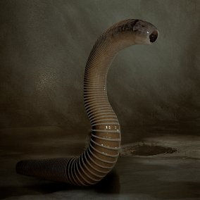 Thin Leech with 30 Animations