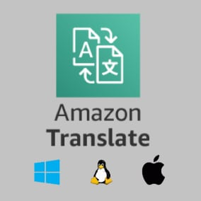 It lets you to translate your text to other language with blueprint.