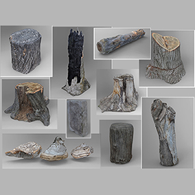 World Wide Assets, version 1.0 - Excellent outdoor pack to be included in any natural environments.