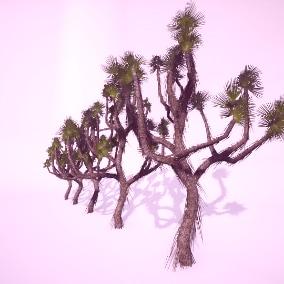 Trees Gen02_02