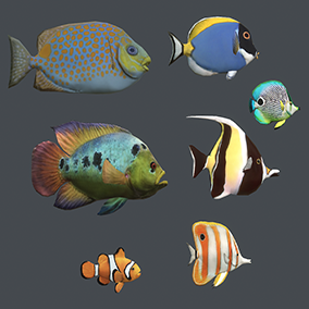 This package contains 48 different underwater animals and several landscape objects such as rocks and plants.