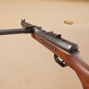 It is the MP34 gun used in World War II.