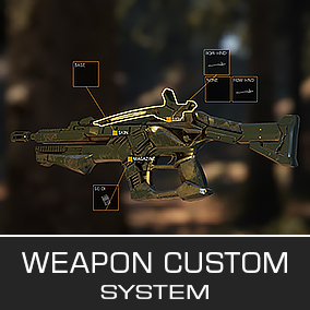 Fully customizable weapon system.
