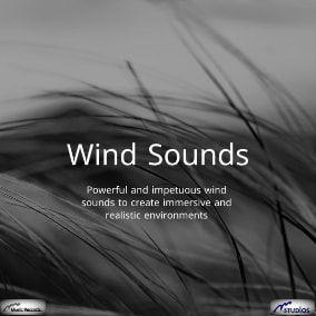 Powerful and impetuous wind sounds to create immersive and realistic environments