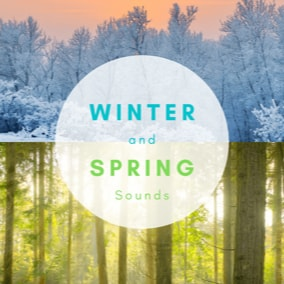 A collection of 28 winter and spring forest sounds.