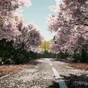 Acacia_Confusa, Acer_negundo, Populus, and Sakura