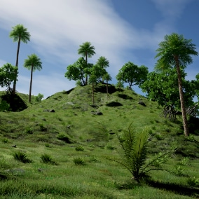 The XfrogPlants 2021 PBR Asia Library contains 20 scientifically accurate species of trees and plants. Each species includes 3 variations, each with 3 LOD's. A realistic and performant demo scene is included, and contains bonus environment assets.