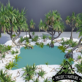 This Pandanus plant asset provides you with a collection of interactive & optimized models to make a natural looking tropical environments.
